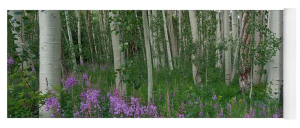 Yoga Mat featuring the photograph Fireweed And Aspen by Cascade Colors