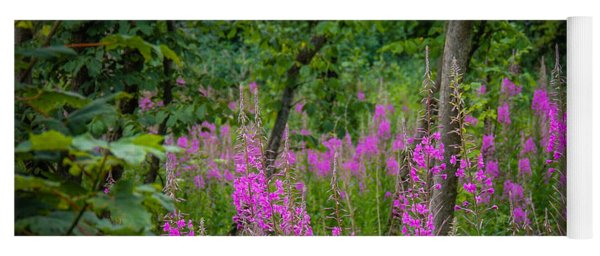Fireweed In The Irish Countryside Yoga Mat
