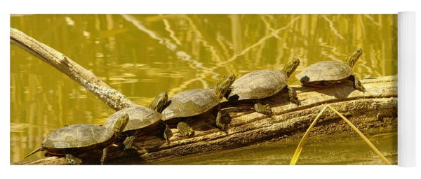 Five Turtles On A Log Yoga Mat