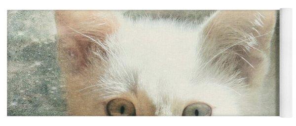 Flamepoint Siamese Kitten Yoga Mat