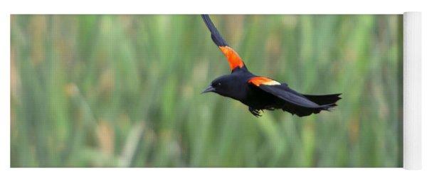 Flight Of The Blackbird Yoga Mat