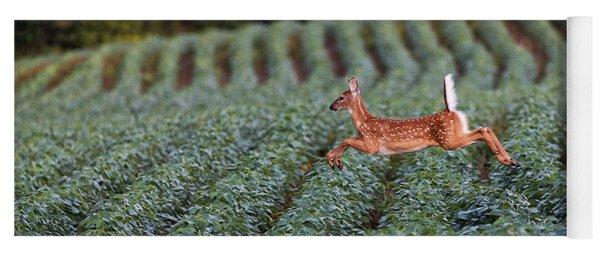 Flight Of The White-tailed Deer Yoga Mat