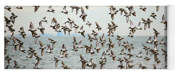 Flock Of Dunlin Yoga Mat