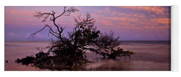 Florida Mangrove Sunset Yoga Mat