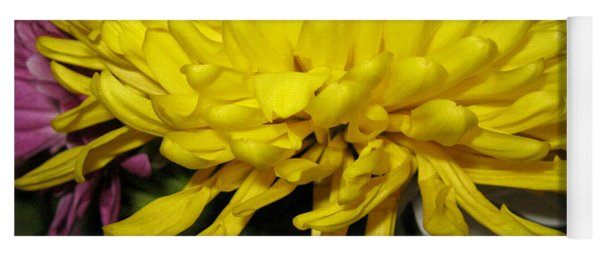 Yellow Queen. Beautiful Flowers Collection For Home Yoga Mat