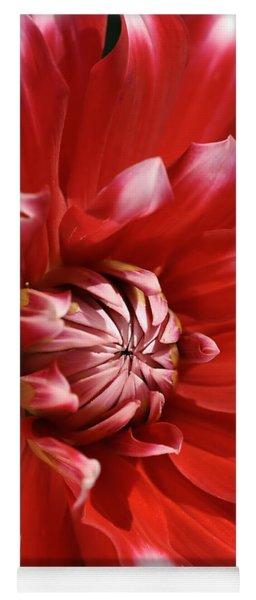 Flower- Dahlia-red-white Yoga Mat