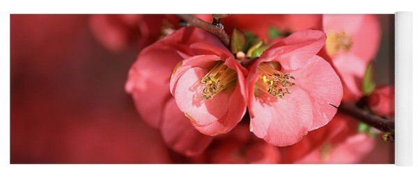 Flowering Quince Yoga Mat