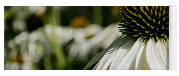 Flowers - Echinacea White Swan Yoga Mat