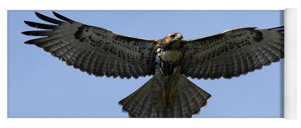 Flying Free - Red-tailed Hawk Yoga Mat