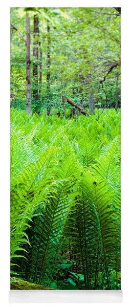 Forest Ferns   Yoga Mat