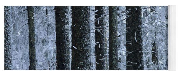Forest In Winter Yoga Mat
