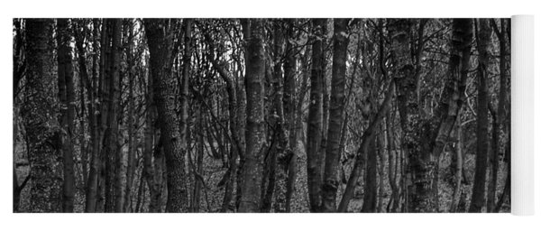 Formby Woods In Monochrome Yoga Mat