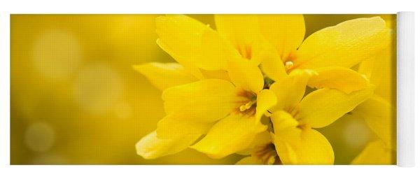 Forsythia Bright Yellow Flowers On Stem  Yoga Mat