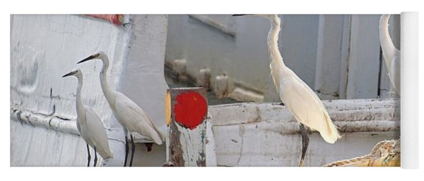 Four Egrets Watch For Fish Yoga Mat