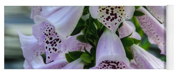 Foxglove At Waters Edge Yoga Mat