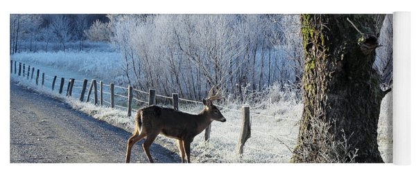 Frosty Cades Cove II Yoga Mat