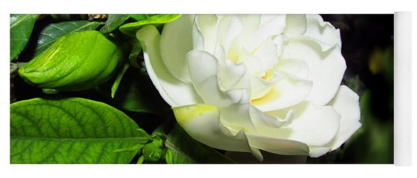 Gardenia 2013 Yoga Mat