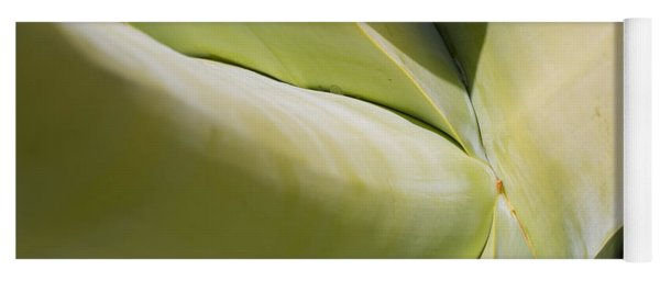 Giant Agave Abstract 9 Yoga Mat