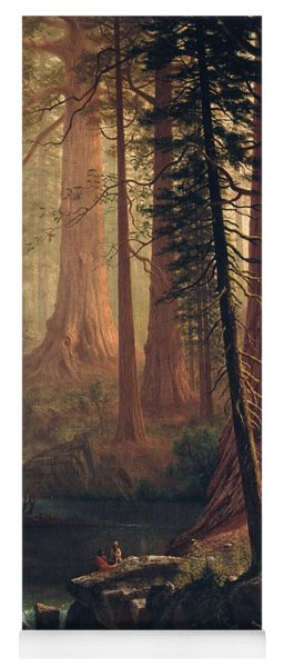 Giant Redwood Trees Of California Yoga Mat