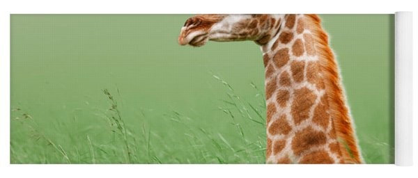 Giraffe Lying In Grass Yoga Mat