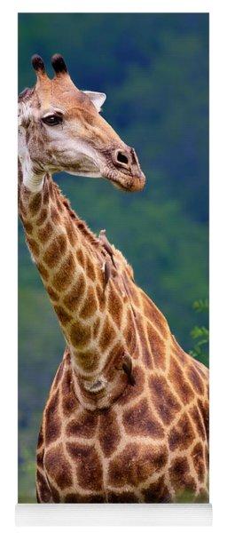 Giraffe Portrait Closeup Yoga Mat