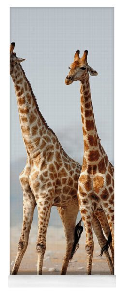 Giraffes Standing Together Yoga Mat