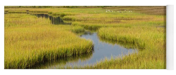 Golden Marsh Yoga Mat