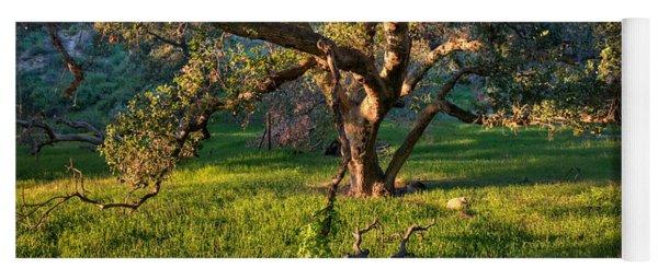 Golden Oak Yoga Mat