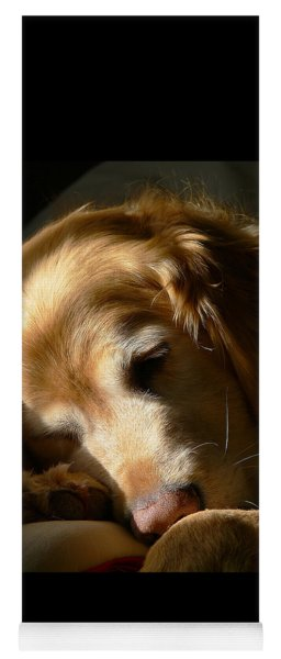 Golden Retriever Dog Sleeping In The Morning Light  Yoga Mat