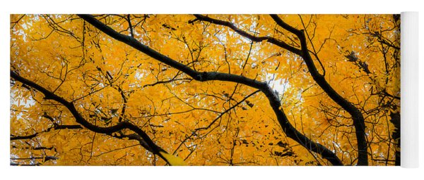 Golden Tree Yoga Mat