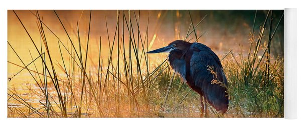 Goliath Heron With Sunrise Over Misty River Yoga Mat