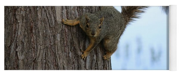 Lookin' For Nuts Yoga Mat