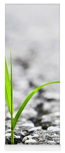 Grass In Asphalt Yoga Mat
