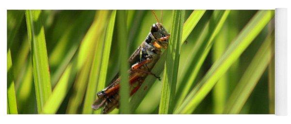 Grasshopper In Grass Yoga Mat