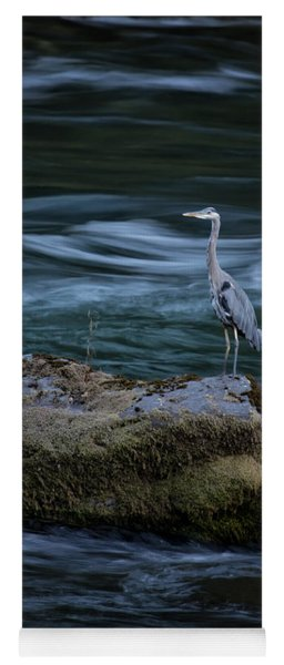 Yoga Mat featuring the photograph Great Blue Heron by Belinda Greb