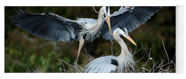 Great Blue Herons Nesting Yoga Mat