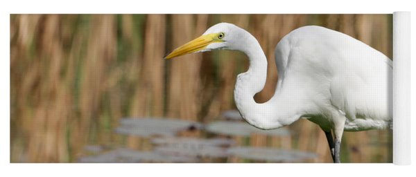 Great White Egret By The River Yoga Mat