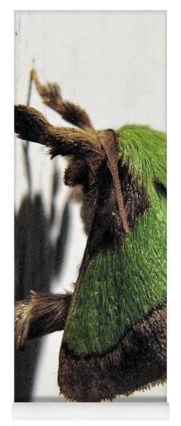 Green Hair Moth Yoga Mat