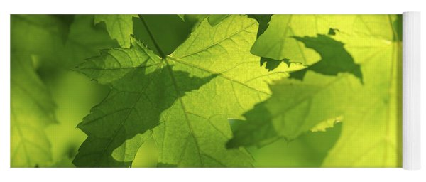 Green Maple Leaves Yoga Mat