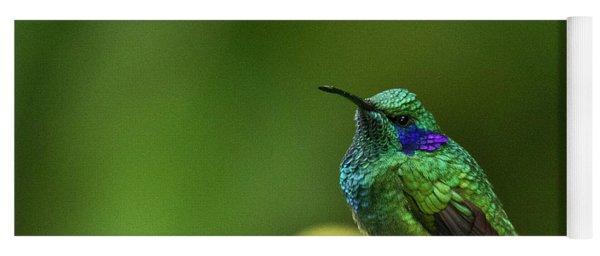 Green Violetear Hummingbird Yoga Mat