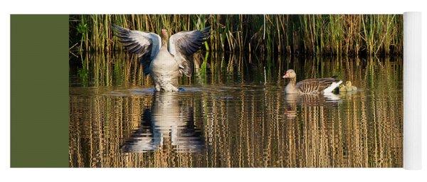 Greylag Goose Family Yoga Mat
