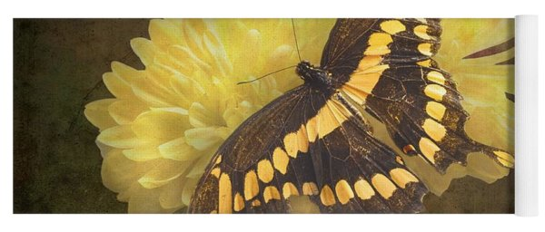 Grunge Giant Swallowtail-1 Yoga Mat