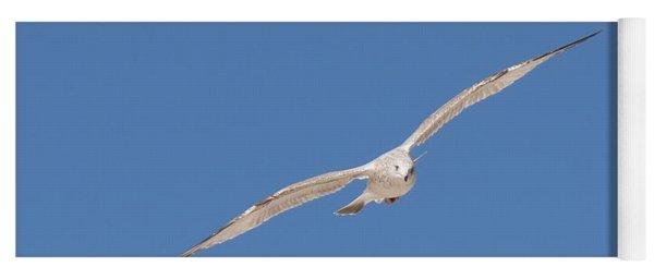 Gull In Flight - 2 Yoga Mat