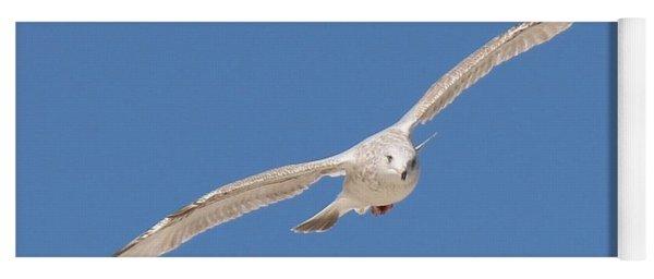 Gull In Flight  Yoga Mat
