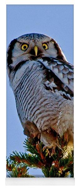 Hawk Owl Square Yoga Mat