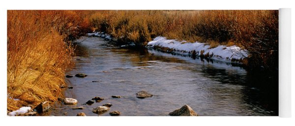 Headwaters Of The River Of No Return Yoga Mat