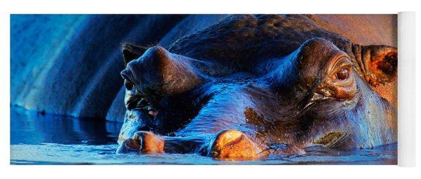 Hippopotamus  At Sunset Yoga Mat