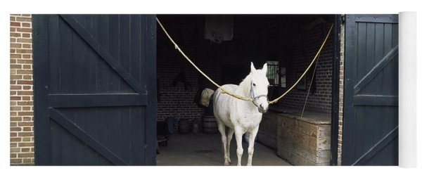 Horse Standing In A Stable, Middleton Yoga Mat