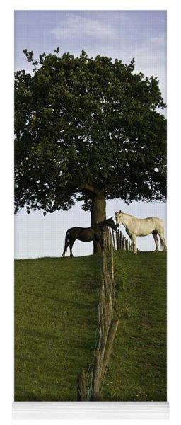 Horse Whisperers   Yoga Mat