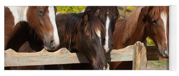 Horses Behind A Fence Yoga Mat